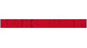 remion-logo-scanclimber